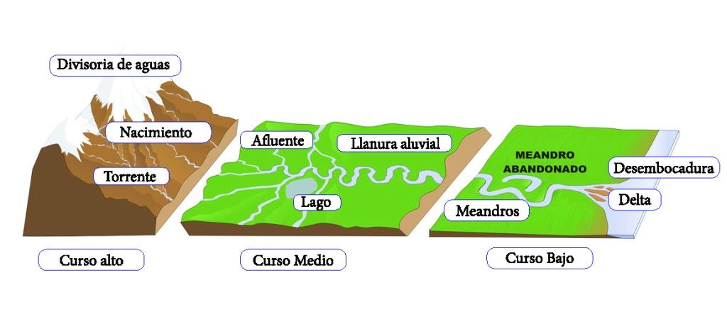 Partes del curso del río, curso alto, medio y bajo.