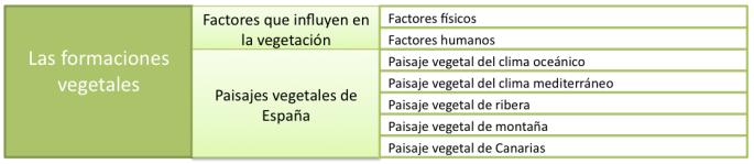 ESQUEMA FORMACIONES VEGETALES EN ESPAÑA