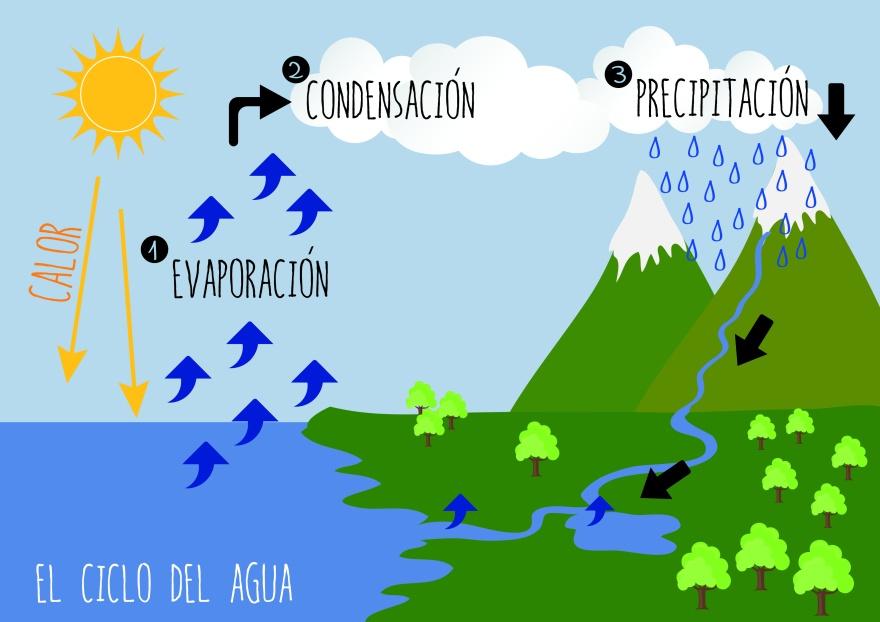 el_ciclo_del_agua_1-01