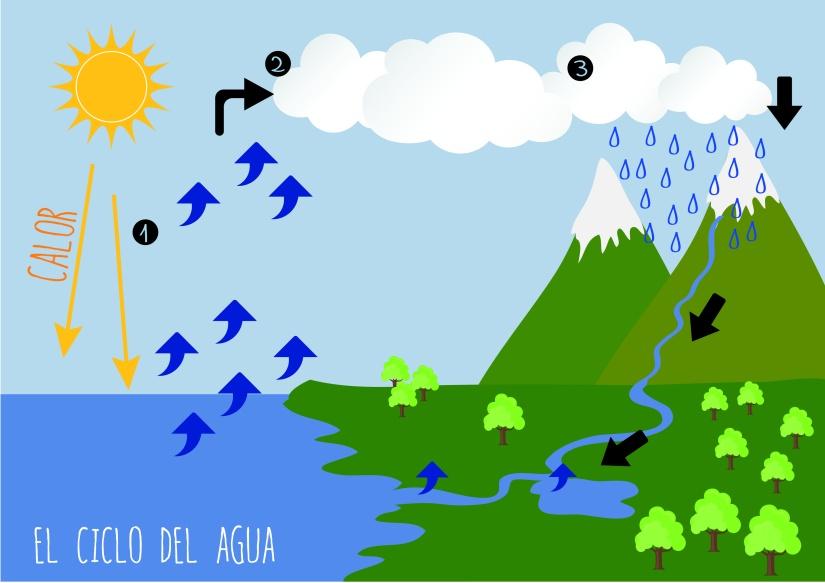 el_ciclo_del_agua_1-02
