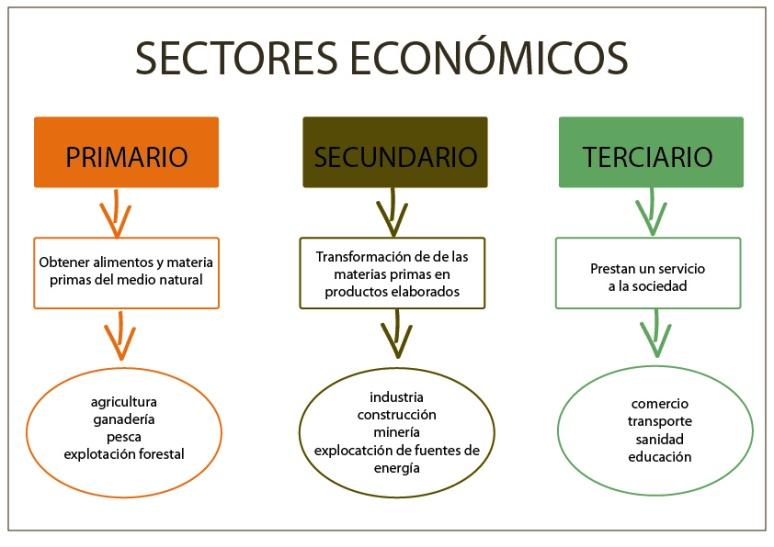 SECTORES ECONOMICOS-01