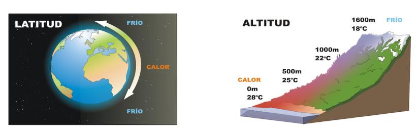 latitud y altitud