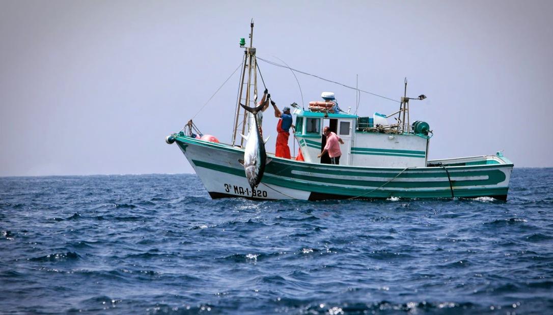 pesca20de20bajura